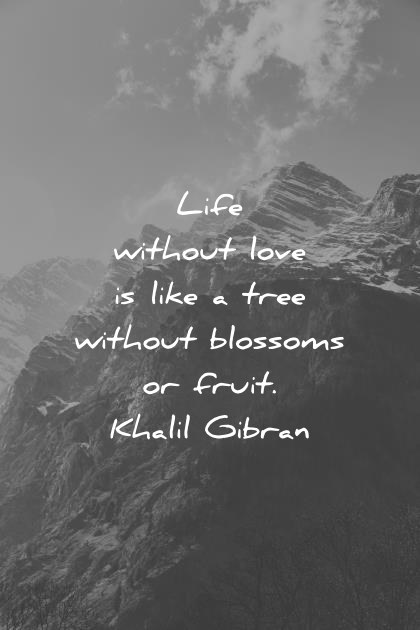 deep quotes life without love is like a tree without blossoms or fruit kahlil gibran wisdom quotes