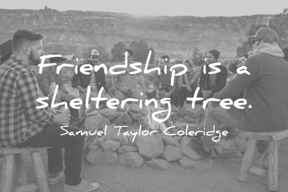 a true friend is like a sheltering tree A large collection of best friend quotes and quotations by the most famous poets and  friendship is a sheltering tree  a true friend stabs you in the front.