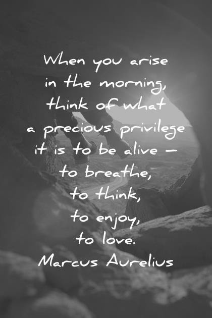 good morning quotes when you arise in the morning think of what precious privilege it is to be alive marcus aurelius wisdom quotes