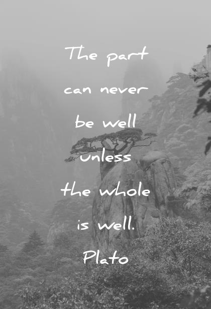 health quotes the part can never be well unless the whole is well plato wisdom quotes