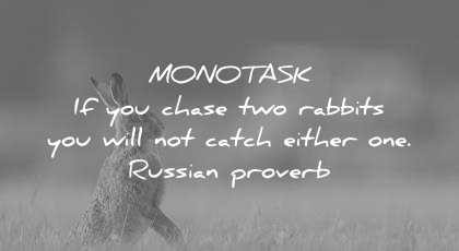 how to learn faster monotask chase two rabbits will not catch either one russian proverb wisdom quotes