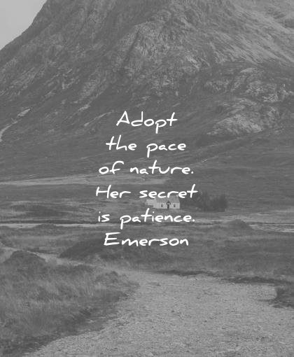 nature quotes adopt pace her secret patience ralph waldo emerson wisdom