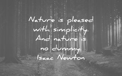 nature quotes pleased simplicity dummy isaac newton wisdom