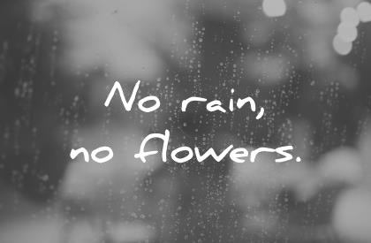 short quotes no rain no flowers wisdom quotes