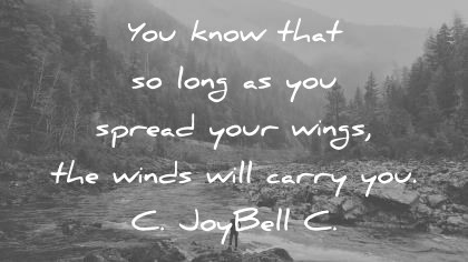 trust quotes you know that so long as you spread your wings the winds will carry you c joybelle c wisdom quotes